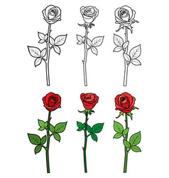 hand drawn ouline and red roses - flowers vector image vector image