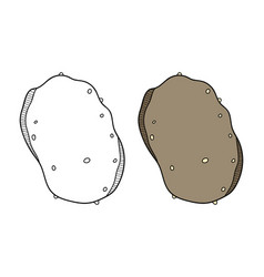potato vegetable black and white vector image vector image
