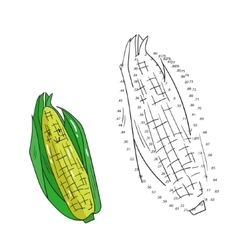 Educational game connect dots to draw corn vector image