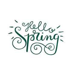 Hello spring hand lettering vector