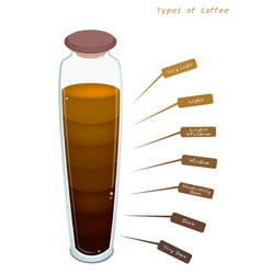 Different Colors of Coffee Drink in A Bottle vector image