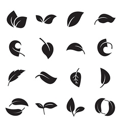 Icons of leaves vector image vector image