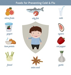 Foods for preventing cold and flu vector