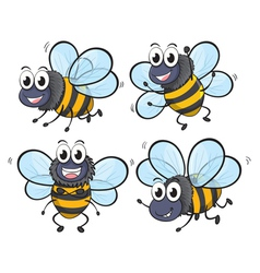 Four bees vector image