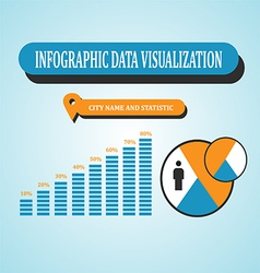 Infographic Data Visualization vector image vector image