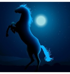 Horse Silhouetted In Blue Moon Light vector image