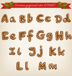 Cute hand drawn christmas gingerbread cookie vector