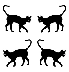 background with black cats vector image