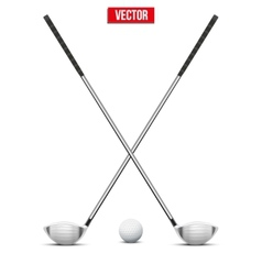 Golf clubs and ball vector image vector image