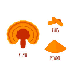 reishi mushroom made in flat style superfood vector image