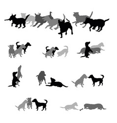 Set of group of dogs silhouettes vector