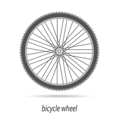 Bicycle wheel isolated vector