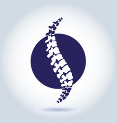 human spine isolated silhouette vector image vector image