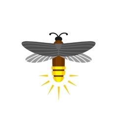 Firefly isolated cartoon logo vector image