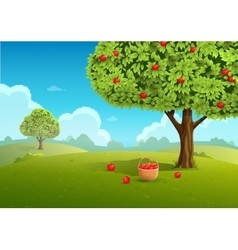 Apple orchard vector