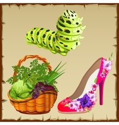 Symbols of summer shoe vegetables and centipede vector
