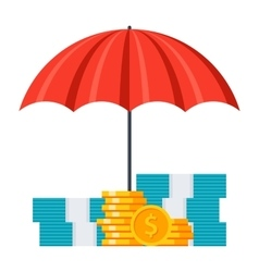 Investment Insurance Concept vector image vector image