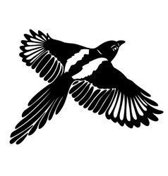 Magpie wings vector
