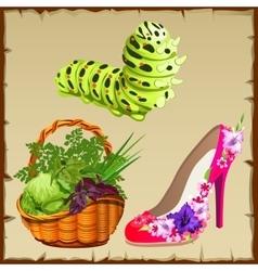 Symbols of summer shoe vegetables and centipede vector