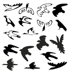 Stylized birds and silhouettes vector