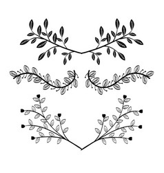 border with leaves design vector image
