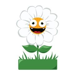 Funny daisy in a garden vector image vector image