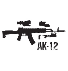 New weapon ak 12 vector