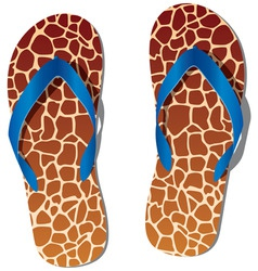 pair of flip flops vector image