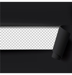 Black torn paper background with empty space for vector