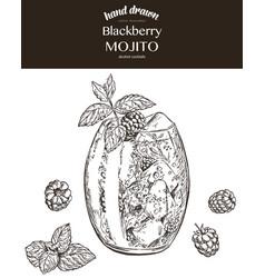 Blackberry mojito sketch vector