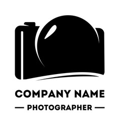 simple logotype for a photographer abstract vector image vector image