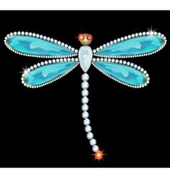 Dragonfly-brooch vector image