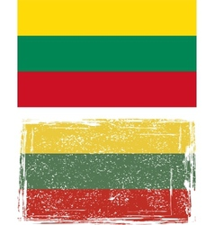 Lithuanian grunge flag vector