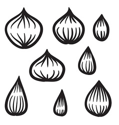 Hand drawn onion set vector