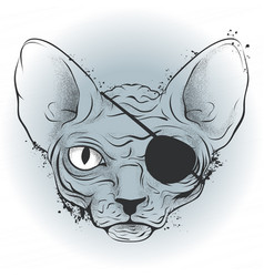 ink drawing bald cat pirate with an eye patch vector image vector image
