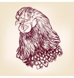 Chicken vintage hand drawn vector