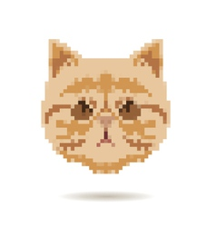 Cat head abstract isolated vector