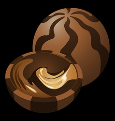 chocolate candy vector image vector image