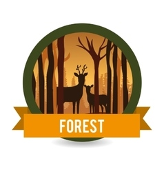 Forest natural parks and landscape vector image