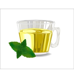 Glass cup of tea with mint leaves vector