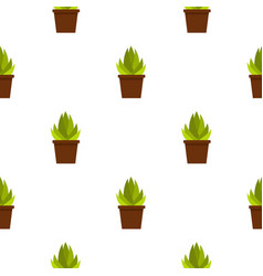 Succulent in flower pot pattern seamless vector