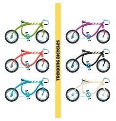 Trekking Bicycles One vector image