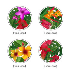 tropical palm leaves and exotic flower vector image vector image