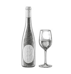 Wine bottles and glass vector