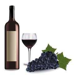 a wine bottle and glass vector image