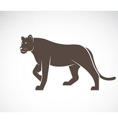 Lion female vector