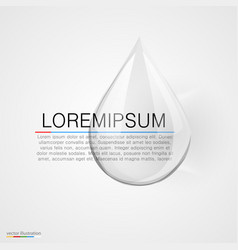 water drop on white background vector image vector image