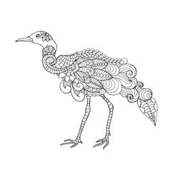 Beautifull bird vector image vector image
