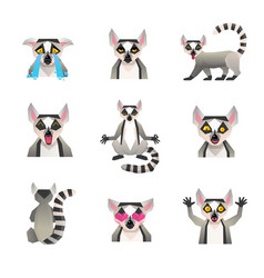 Polygonal lemur icon set vector