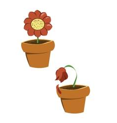 pots of flowers vector image